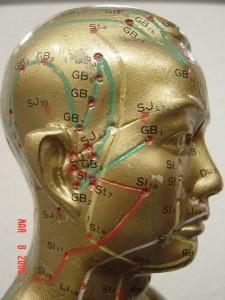 head meridains pic